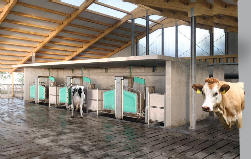 Dairy_Robot_Stall_11_01_EBV_16bit_cmyk_02